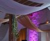 Vign_Decorations_tentures_mariage__drapes_par_festidomi