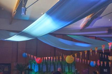 Vign_tentures_mariages_pour_decor_plafond_de_salles_de_mariages